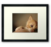 R.I.P. Sweet Little Baby Framed Print