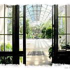 Longwood Gardens picture perfect 6...... by DaveHrusecky