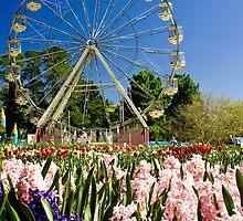 Floriade Fun by Raquel O'Neill
