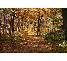 Autumn At Hawthorn Hollow Photographic Print