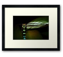 the unexpected visitor Framed Print