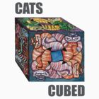 CATS CUBED by Sally Sargent