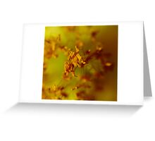 Snap Crackle And Pop Greeting Card
