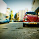 red Beetle by waitin' for rain