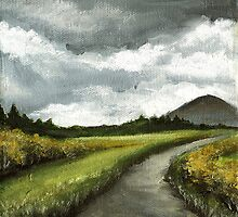 Gloomy skies of Connemara by tanyabond