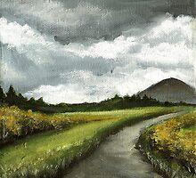 Gloomy skies of Connemara by tanyabond