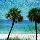 Palm trees at Gulf Coast  by Susanne Van Hulst