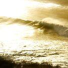 Gold Surfer by Alex Evans