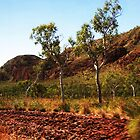 Another stunningly colourful Kimberley scene by georgieboy98