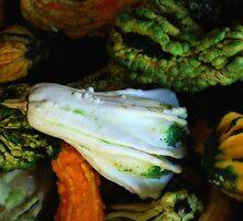Gourds a Plenty by Mattie Bryant