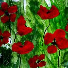 Field Poppies 1 by Angela Gannicott