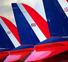 Red Fins by Stuart Robertson Reynolds