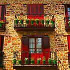 Colores de Villaro - Bilbao, Basque Country by DavidGutierrez
