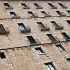 Windows by Blaz Erzetic