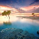 Deception Bay by Ben Ryan