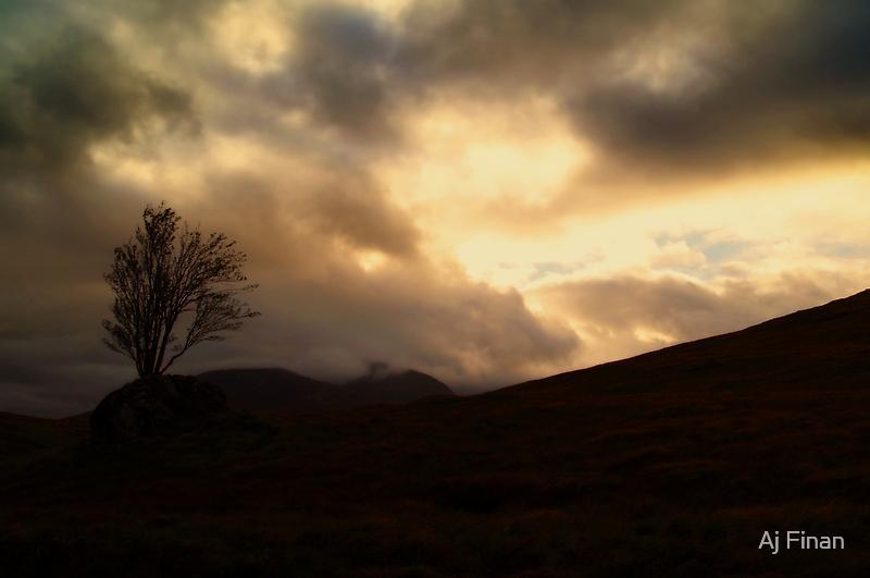 Watching over Rannoch Moor. by Aj Finan