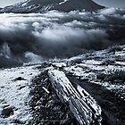 First snow by Tomas Kaspar