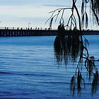 Pier, Pier, Pier by LookOutBelow
