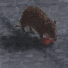Bandicoot with a persimmon by Jodi Bassett