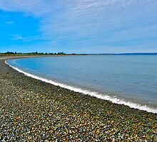 Belliveau Cove by David Davies