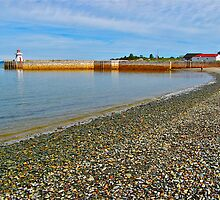 Belliveau Cove III by David Davies
