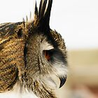 Eagle Owl Profile by Moonlake