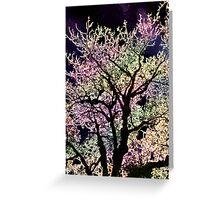 evening tree Greeting Card