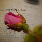 The Last Rose ~ Still Life by Sandra Cockayne
