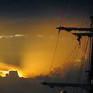 Last Light by Natiplop