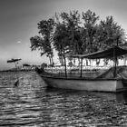 When Fisherman Going Home by artz-one