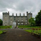 Castle in Kilkenny by julie08