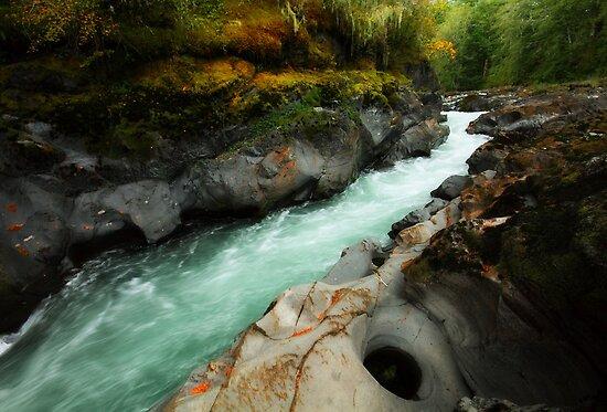 Qu'wutsun River I by EchoNorth