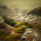 Himeji View III by Stephanie Jung