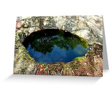 The Eye of the Forest Greeting Card