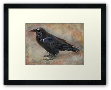 Raven Says: by Kay Kempton Raade