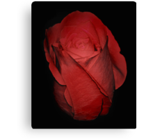 The Perfect Red Rose Canvas Print