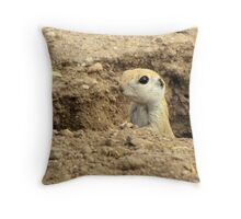 Round-tailed Ground Squirrel ~ Peek-a-boo Throw Pillow