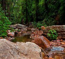 El Questro Gorge, Western Australia by David Harte