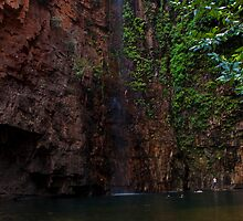 Emma Gorge, Western Australia by David Harte