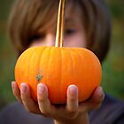 Pumpkin in hand by soniarene