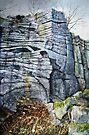 Rivelin Crags by Sue Nichol