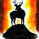 Sunset Stag by Dawn B Davies-McIninch
