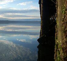 Reflections. by Jennifer Bishop