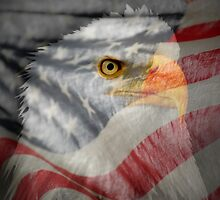 Patriot-Bald Eagle And American Flag by Ron Day