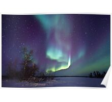 Aurora Borealis over Gordon Lake Poster