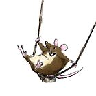 Swinging Mouse by Jennifer Kilgour