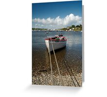 'Swallow' in the Cove of Baltimore, Ireland. Greeting Card