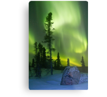 Green curtains over Yellowknife Metal Print