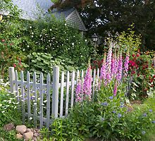 New England Cottage Garden by perpetualphoto