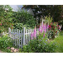 New England Cottage Garden Photographic Print